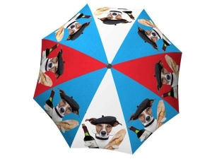 Designer Rain Umbrella with gift box French Dog
