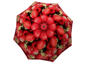 Lightweight Portable Rain Umbrella with Fruit - Unique Gift Strawberries Umbrella - best rated umbrella