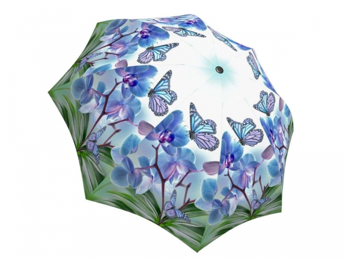 Rain umbrella with gift box - Butterflies