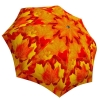 Rain umbrella with gift box - Canadian Autumn