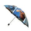 Good quality folding rain umbrella with gift box Canadian Collage