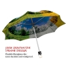 Four Seasons stylish art auto open umbrella