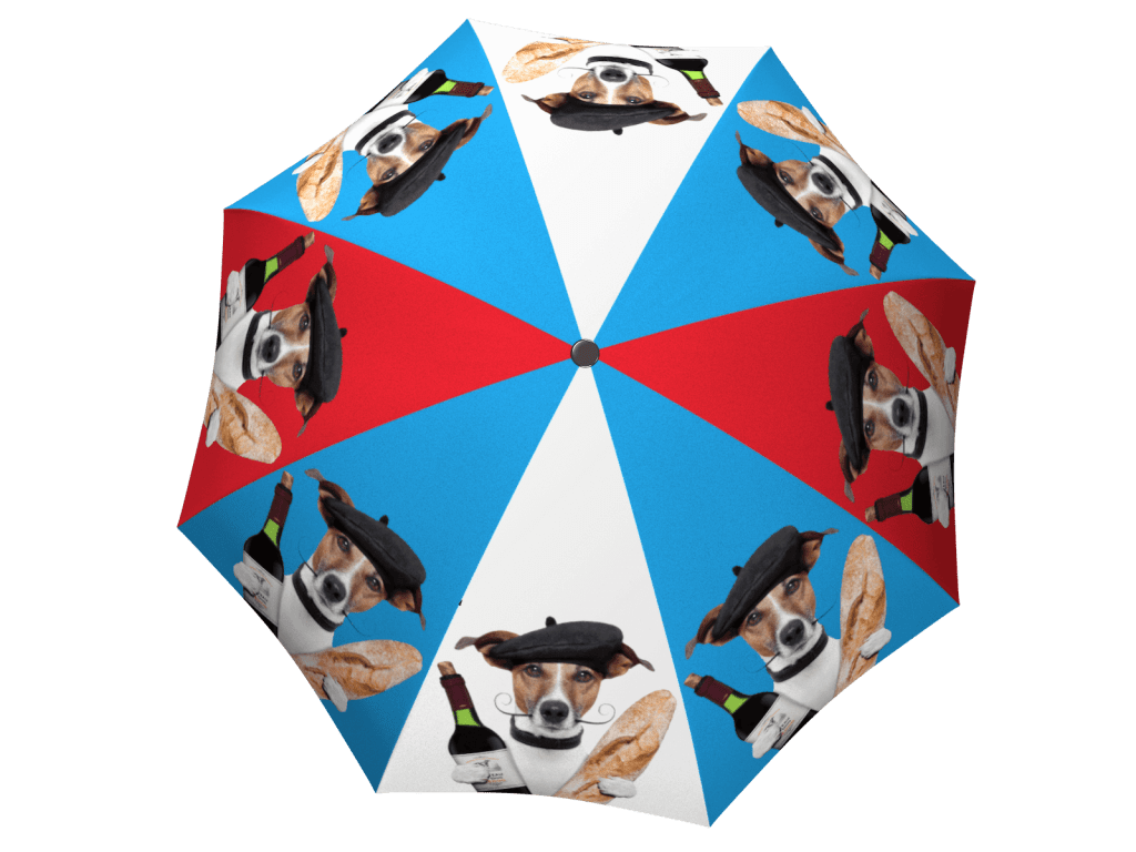 Umbrella with gift box French Dog