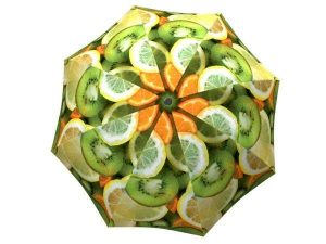 Lightweight Windproof Travel Umbrella with Fruits Design - Unique Vitamin C Umbrella Lemon Orange - best umbrella reliable