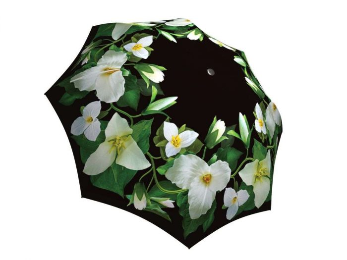 Rain umbrella with gift box - Trillium