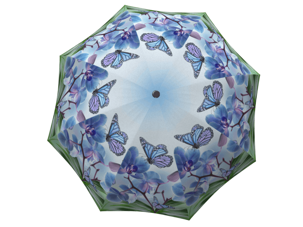Umbrella with gift box Butterflies