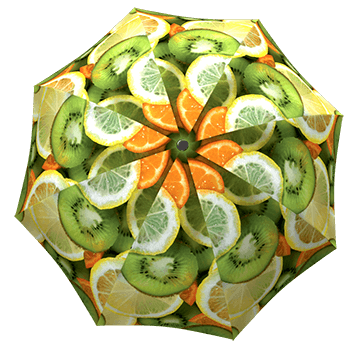 Shop for Unique Umbrellas and gifts