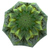 Designer umbrella with gift box Green Flower