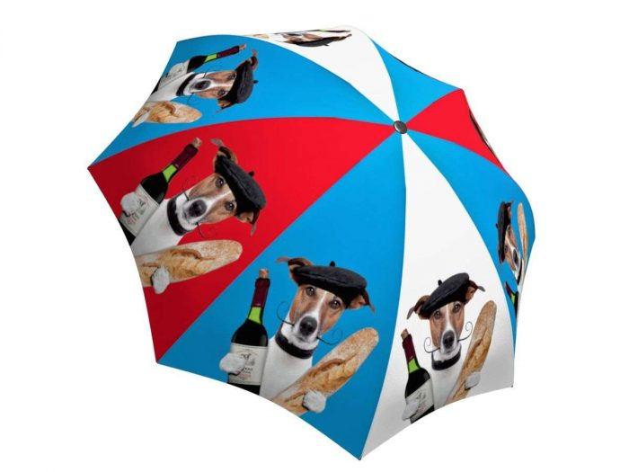 Rain umbrella with gift box - French Dog
