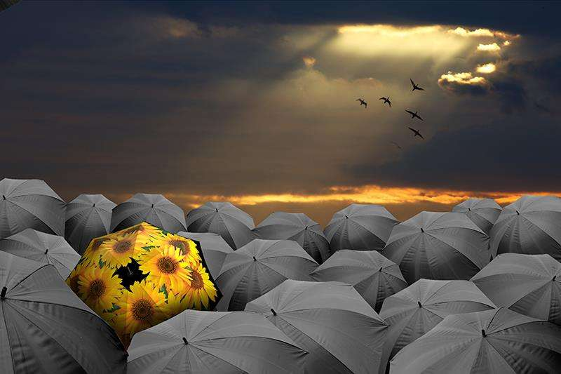 About Us | La Bella Umbrella