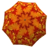 Designer umbrella with gift box Canadian Autumn