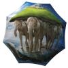Designer umbrella with gift box Elephants