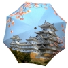 Designer umbrella with gift box Japan