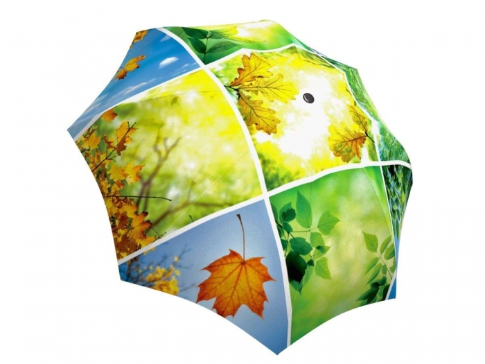 Rain umbrella with gift box - Spring Collage