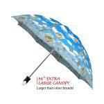Raining Money good quality folding rain umbrella with gift box