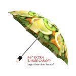 Vitamin C good quality folding rain umbrella with gift box
