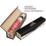 Tulips high quality unique umbrella in gift box_automatic