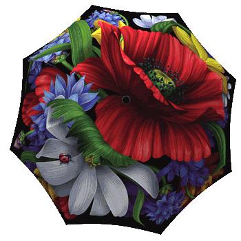 Fashion Umbrella for women Wild Poppies