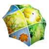 Compact Automatic Rain Umbrella Spring Collage Design - Vintage Umbrella Windproof Auto Open Close - Art Umbrella for Women
