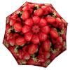 Lightweight Portable Rain Umbrella with Fruit - Unique Gift Strawberries Umbrella - best rated umbrella