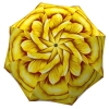 Designer Floral Umbrella for Women - Rose Umbrella Yellow Flower Design - cheeky umbrellas