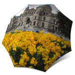 Compact Automatic Rain Umbrella Canadian Gift - Canada umbrella