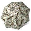 Umbrella Dollar Bills Funny Design Portable Umbrella Unique Gift for Men