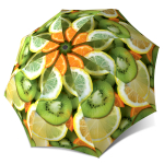 Compact Portable Rain Lightweight Windproof Travel Umbrella with Fruits